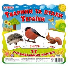 Комплект мини-карточек Животные и птицы Украины