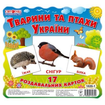 Комплект міні-карток Тварини і птахи України - фото Ранок Креатив