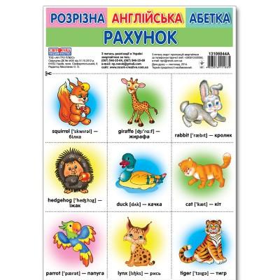Комплект карток Розрізна англійська азбука. Рахунок - фото Ранок Креатив