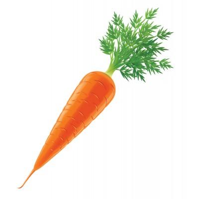 Комплект карток Зайчик і морквина - фото Ранок Креатив